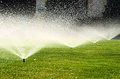 stock photo of sprinkling  - garden sprinkler on a sunny summer day during watering the green lawn - JPG