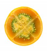 Citric Fruit poster