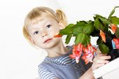 stock photo of schlumbergera  - portrait of little with Christmas cactus - JPG