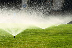 image of sprinkling  - garden sprinkler on a sunny summer day during watering the green lawn - JPG