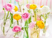 picture of vase flowers  - Beautiful spring flowers in vase - JPG
