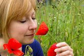 stock photo of poppy flower  - Woman smells appreciatively at a red poppy flower in a field - JPG