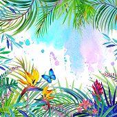 stock photo of jungle flowers  - Tropical flowers - JPG