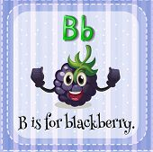 pic of letter b  - Flashcard letter B is for blackberry - JPG