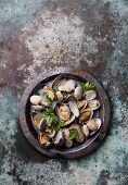 foto of clam  - Shells vongole venus clams in metal dish on metal background - JPG