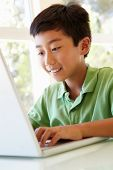 picture of pre-teen boy  - Young Asian boy using laptop - JPG