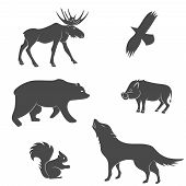 image of animal silhouette  - Set of forest animals vector silhouettes - JPG