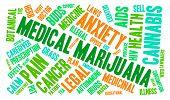 image of medical marijuana  - Medical marijuana word cloud on a white background - JPG