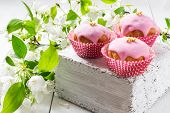 image of white sugar  - Fresh homemade cupcakes with pink glaze and sugar beads on a thick white wooden board the apple blossoming branch on a white wooden table - JPG