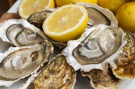 stock photo of oyster shell  - appetizing French oysters with lemon delicious really delicious gourmet food - JPG