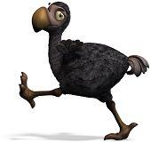 stock photo of dodo  - very funny toon Dodo - JPG