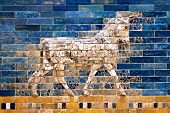 picture of mesopotamia  - Ornament of the Babylon walls - JPG