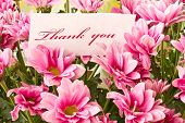 foto of thank you card  - say  - JPG
