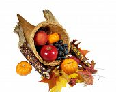 foto of cornicopia  - a corucopia full of fruit for the thanksgiving holliday - JPG