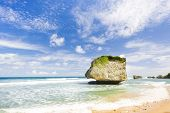 pic of greater antilles  - Bathsheba - JPG