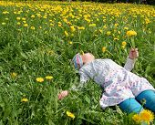 stock photo of pantihose  - Girl lies on meadow with yellow dandelions - JPG