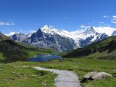 Постер, плакат: Швейцарский красоты Веттерхорн и Шрекхорн сверху Bachalpsee