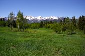 stock photo of snow capped mountains  - Rocky Mountains in the spring showing trees and snow capped mountains - JPG