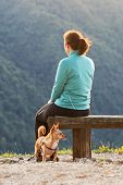 Woman Hiker With Small Dog Sitting On Wooden Bench And Enjoying The View On Top Of The Hill. Hiking, poster