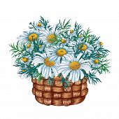 Watercolor Basket With Flower Bouquet Inside, Hand Drawn Isolated On A White Background. Watercolor  poster