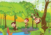 foto of cheeky  - illustration of 3 cheeky monkeys  - JPG