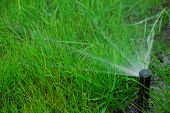 stock photo of loam  - Pop up lawn irrigation system to water grass growing in sandy loam - JPG