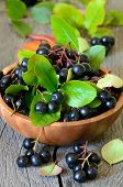 foto of chokeberry  - Black chokeberry in brown bowl on wooden table
