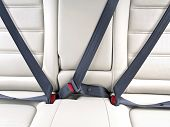 picture of seatbelt  - fasten seat belts in the car for your safety - JPG