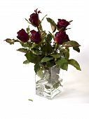 roses in a clear glass vase