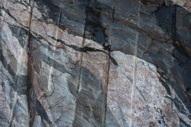foto of gneiss  - This image shows a closeup of a rockface which has multiple intrusions - JPG