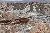 stock photo of petrified  - Petrified trees and wind eroded rock formations in the Petrified Forest National Park of Arizona USA - JPG