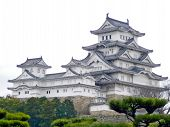 stock photo of shogun  - The beautiful Himeji Castle - JPG