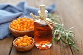 foto of sea-buckthorn  - Sea - JPG