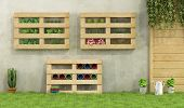 stock photo of wooden pallet  - Garden with planters made of recycled wooden pallets  - JPG