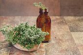 pic of essential oil  - Fresh thyme herb and Essential thyme oil in a dark glass bottle with copy space for your text - JPG