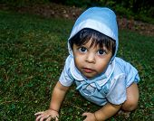 picture of crawl  - Close up shot of latino baby dressed up and crawling outside in the grass - JPG