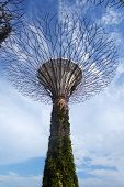 picture of garden sculpture  - SINGAPORE  - JPG