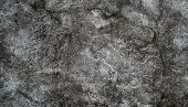 Old Grunge Texture Concrete Wall. Texture Of Old Gray Concrete Wall For Background. Gray Rough Concr poster