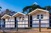 Seaside Beach Huts With Nature In Bournemouth. Uk poster