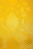 Leather products. Yellow leather poster