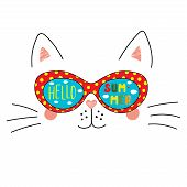 Hand Drawn Portrait Of A Cute Cartoon Funny Cat In Sunglasses With Clouds In The Sky Reflection, Tex poster