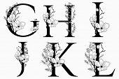 Vector Hand Drawn Floral Uppercase Letters Monograms Or Logo. Uppercase Letters G, H, I, J, K, L Wit poster