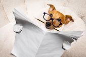 Cool Funny Jack Russell  Dog Reading A  Blank Empty Newspaper Magazine Wearing  Glasses, With Pencil poster
