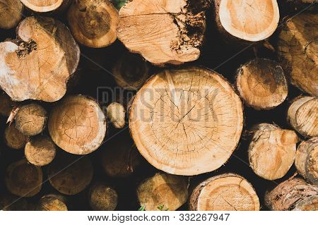 poster of Stack Of Logs. Natural Wooden Background With Timber. Log Wall