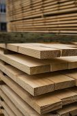 Piles Of Wooden Boards In The Sawmill, Planking. Warehouse For Sawing Boards On A Sawmill Outdoors.  poster