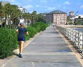 The Battery In Charleston