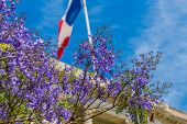 Nice Cote D Azur. France. June 20 2019. A View Of A French Flag And A Lavender Tree In Nice In Cote  poster