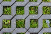 Texture, Concrete Cell Ecological Parking For Cars. Floor Covering Outdoor Parking, Grass Makes Its  poster