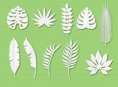 Paper Tropical Leaves. Exotic Plants In Origami Trendy Style, Tropical White Paper Cut Jungle Nature poster