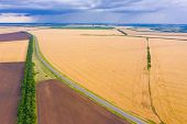 Asphalt Road Through The Field And Panorama Of A Wheat Field, Wheat Crop In Russia, Thunderclouds Ov poster